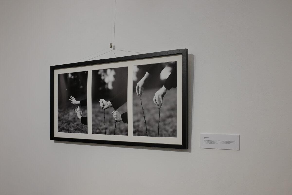 212 gallery-13